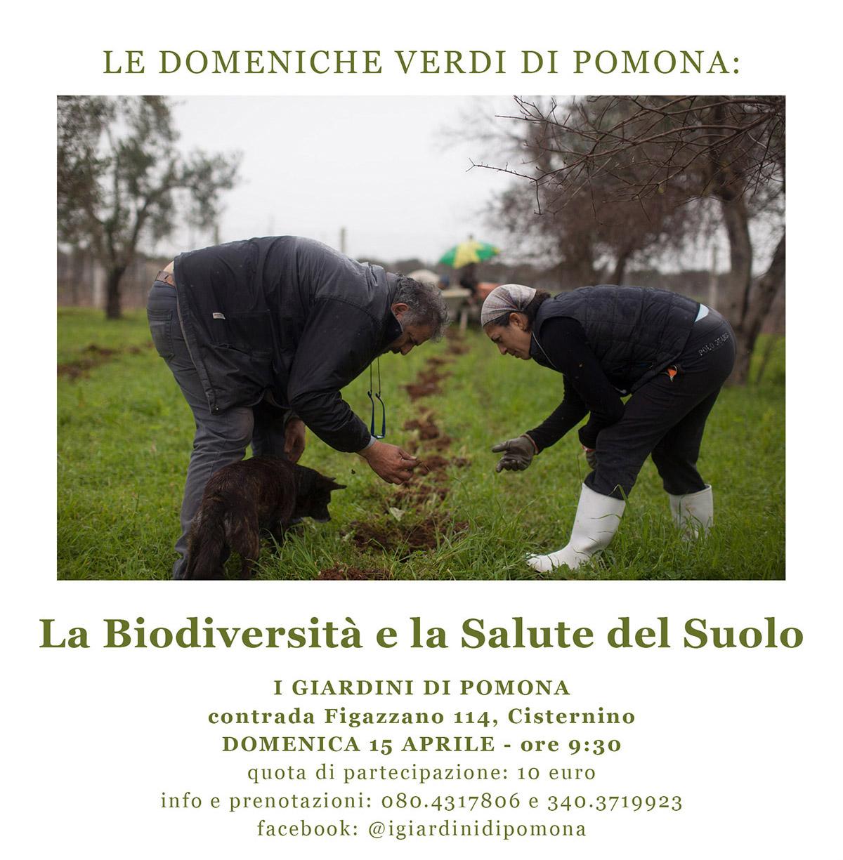Cisternino, 15 aprile 2018
